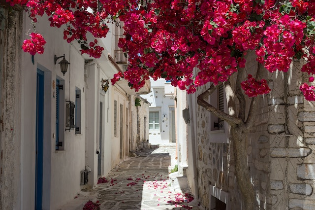 Alley on Samos, Greece