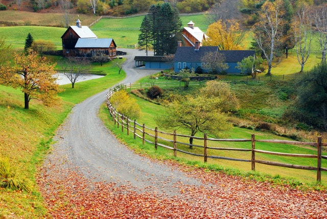 A country lane leads to a bucolic farm
